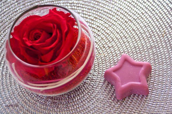 Utiliser un shampoing solide (vegan) Les savons de Broceliande